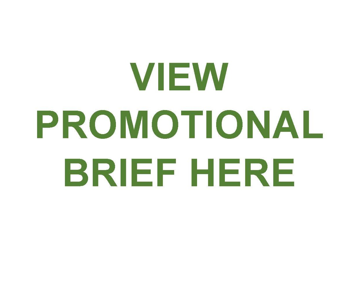VIEW PROMOTIONAL BRIEF HERE final
