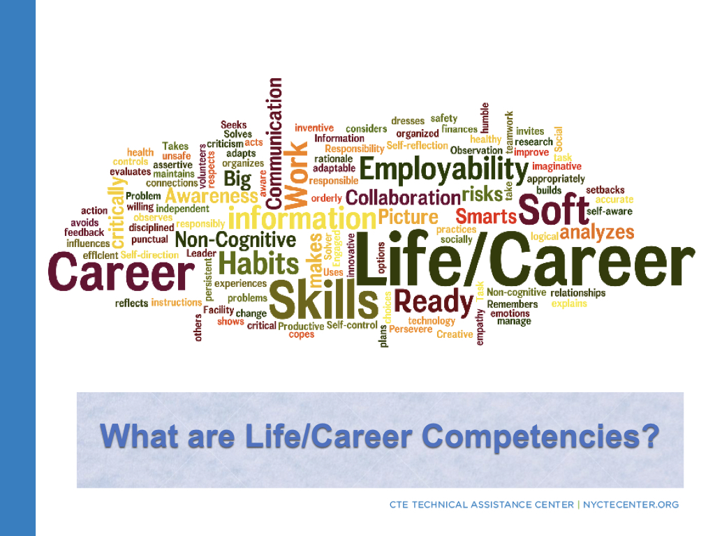 What LifeCareer Competencies